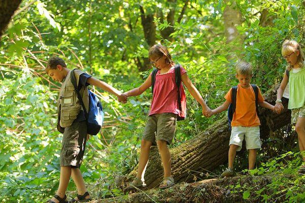 7 hoạt động mùa hè thú vị cho trẻ tự do trải nghiệm