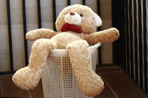 Чистка плюшевого мишки: как постирать мягкие игрушки