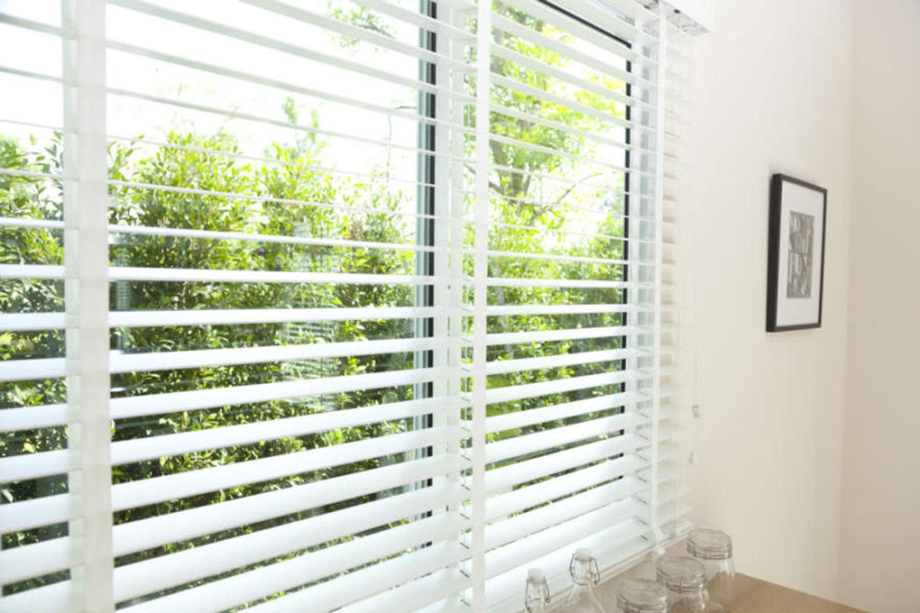 Step 5: Ağaçlara bakan bir pencerede asılı jaluzi perde
