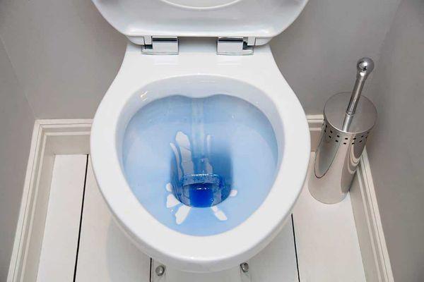 Privada branca higienizada