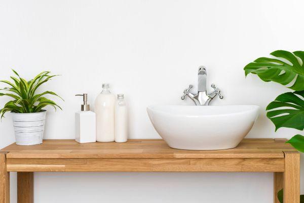 Banyo Bitkileri Nelerdir? Nem Alan Bitkiler Hangileridir?