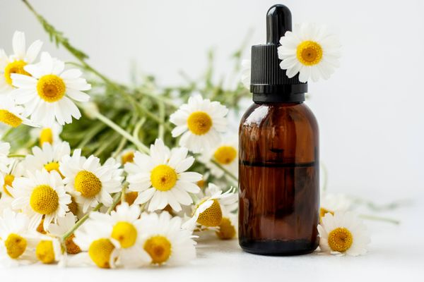 How to Make Eco-Friendly Perfume at Home with Essential Oils - Cleanipedia