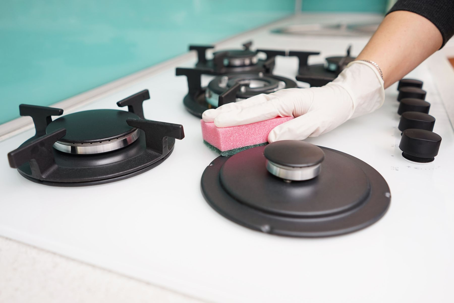 How to Keep your Kitchen Fungus Free | Cleanipedia
