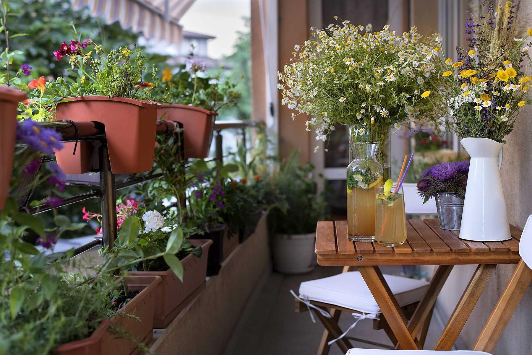 Trang trí ban công với chậu hoa nhỏ