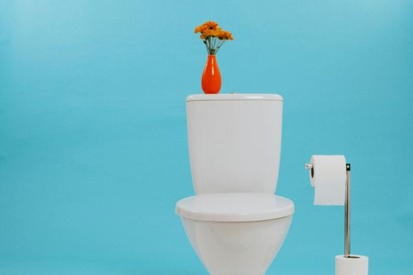 common toilet problems: how to fix a slow flushing toilet