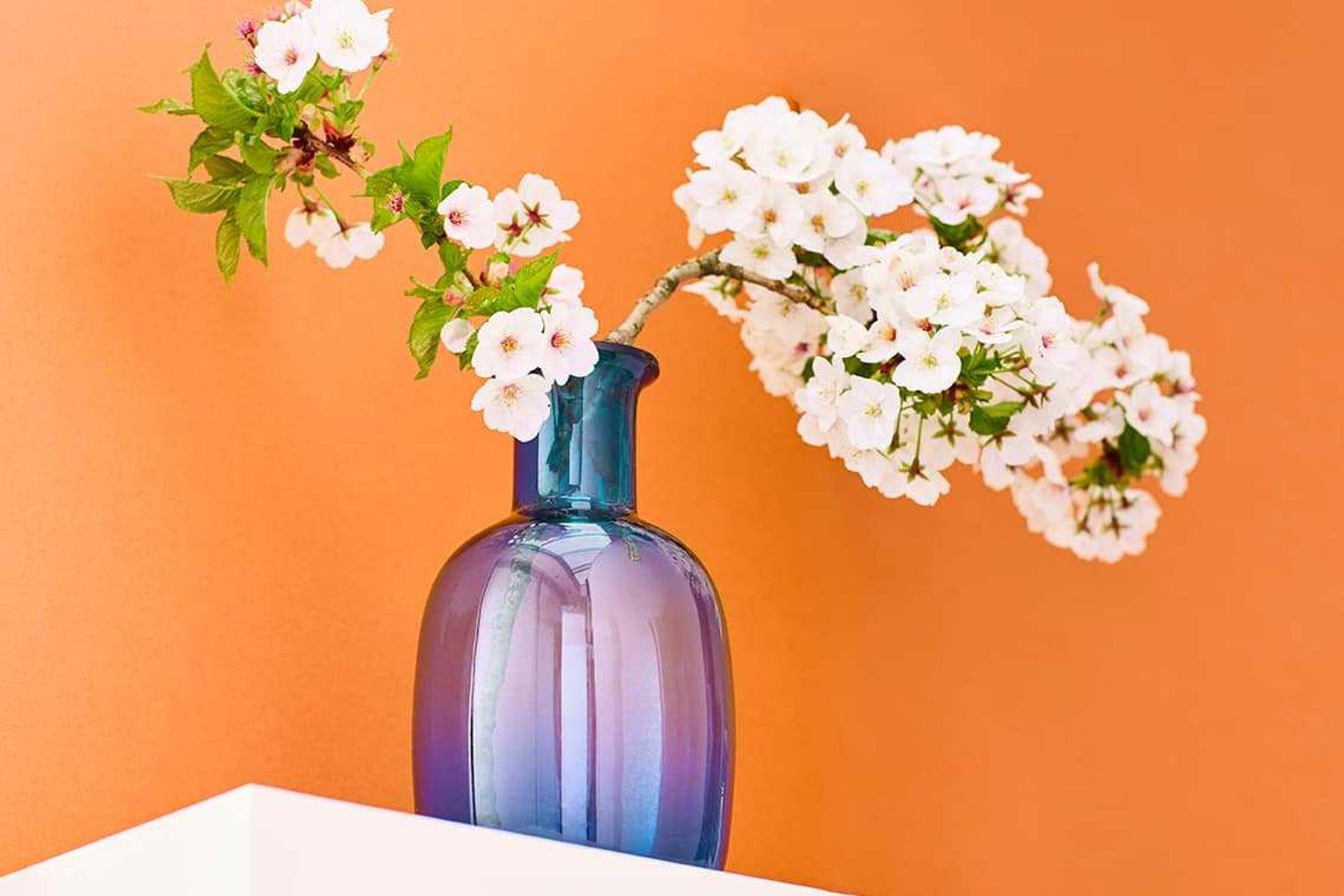 decorar-casa-veja-dicas-para-transformar-todos-os-ambientes