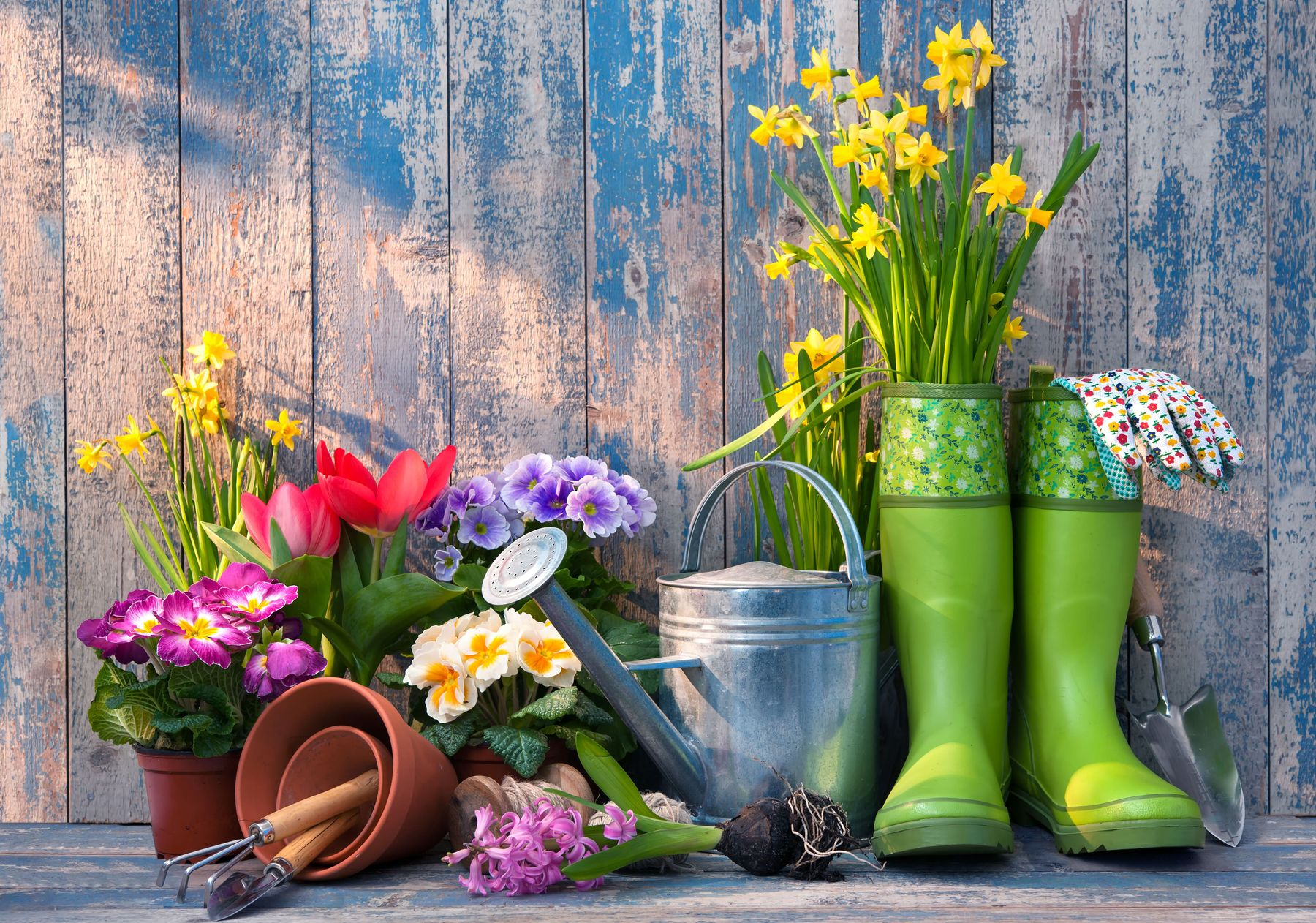 Tools for your gardening