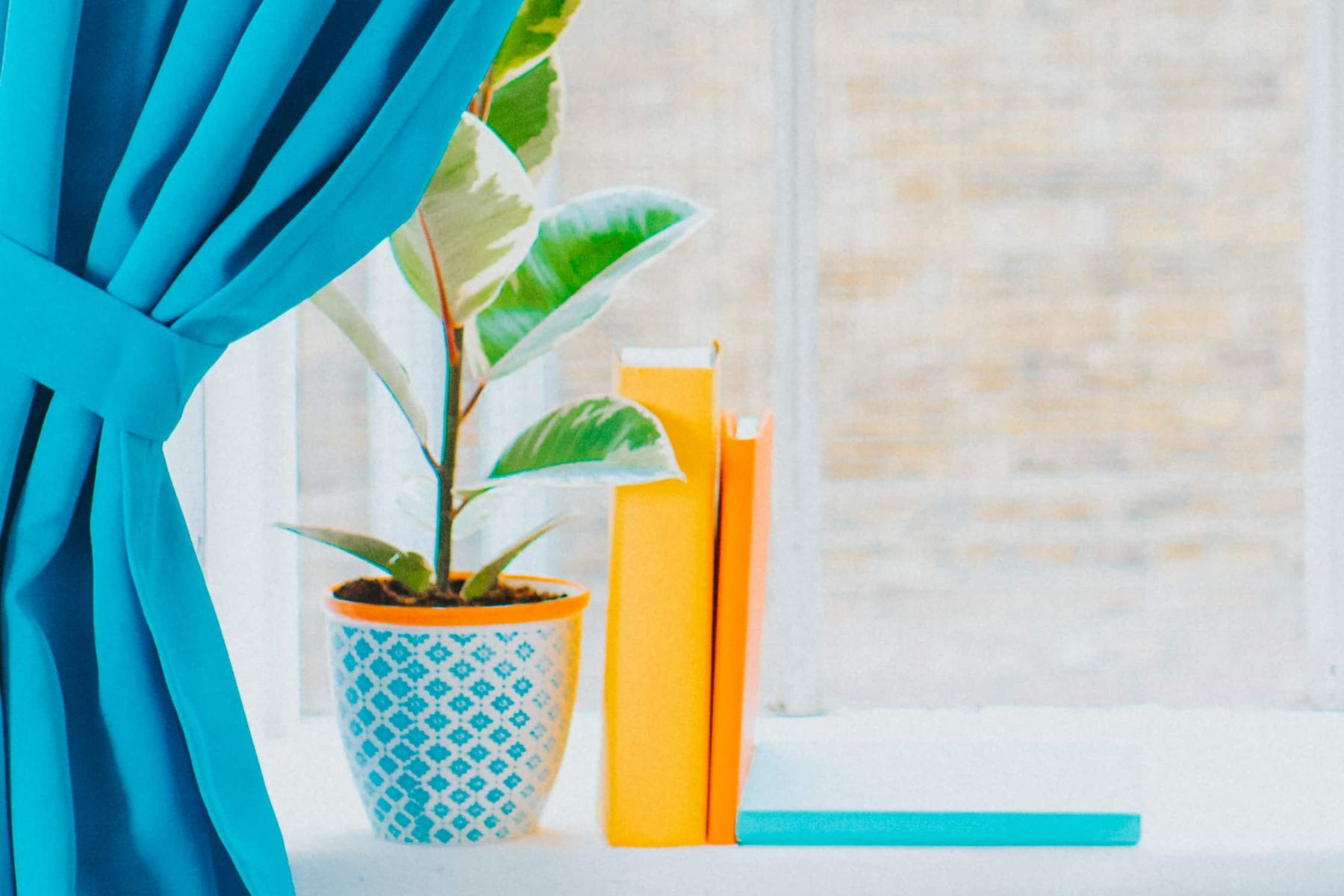 clean window and window sill with plant pot, books, and blue curtain