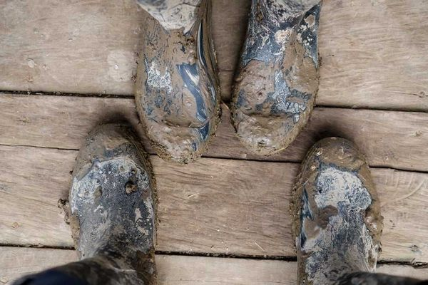 Cách khử mùi giày hôi ẩm hiệu quả mùa mưa
