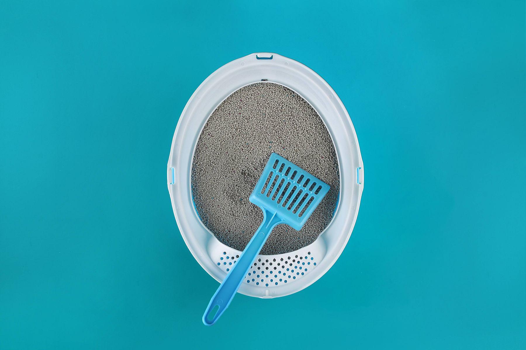 bac à litière pour chat et pelle de nettoyage