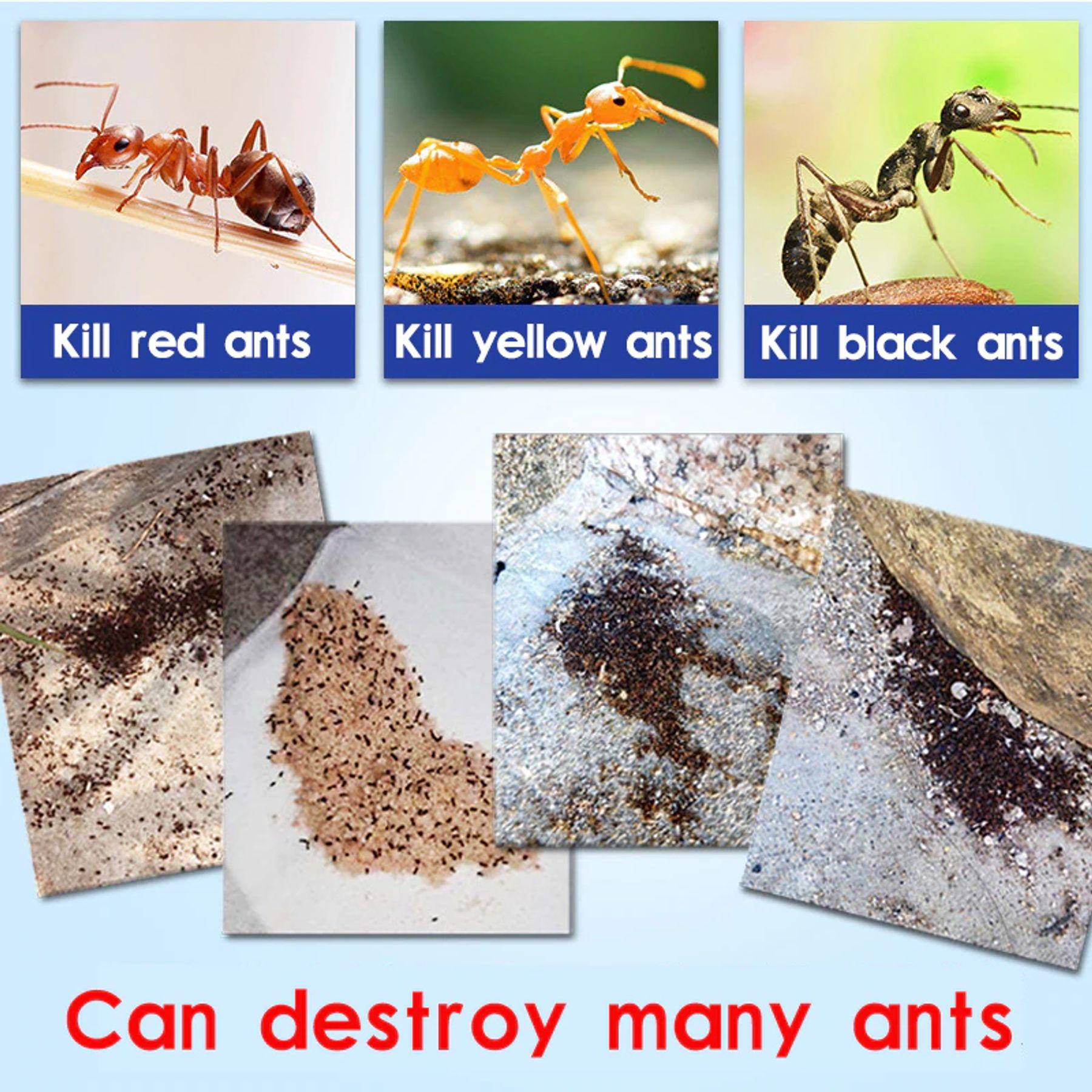 thuốc diệt côn trùng nào tốt nhất hiện nay