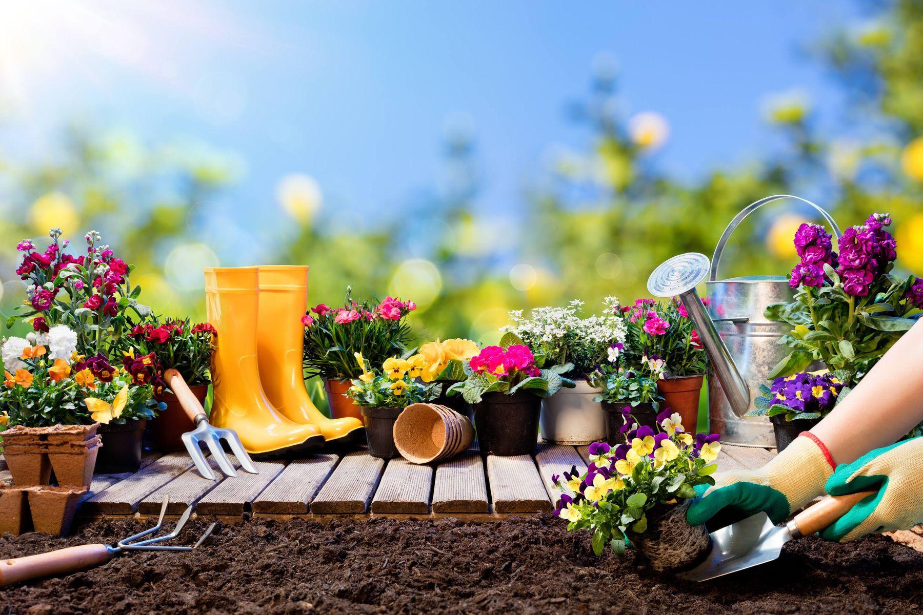 अपने बगीचे में जैविक खाद कैसे बनाएं | गेट सेट क्लीन