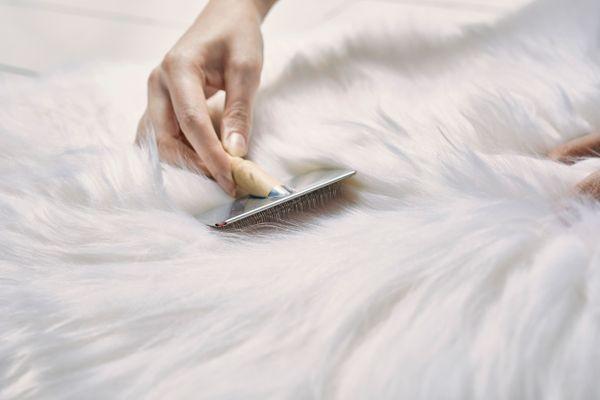Giặt áo khoác lông cừu làm sao để không mất phom dáng?