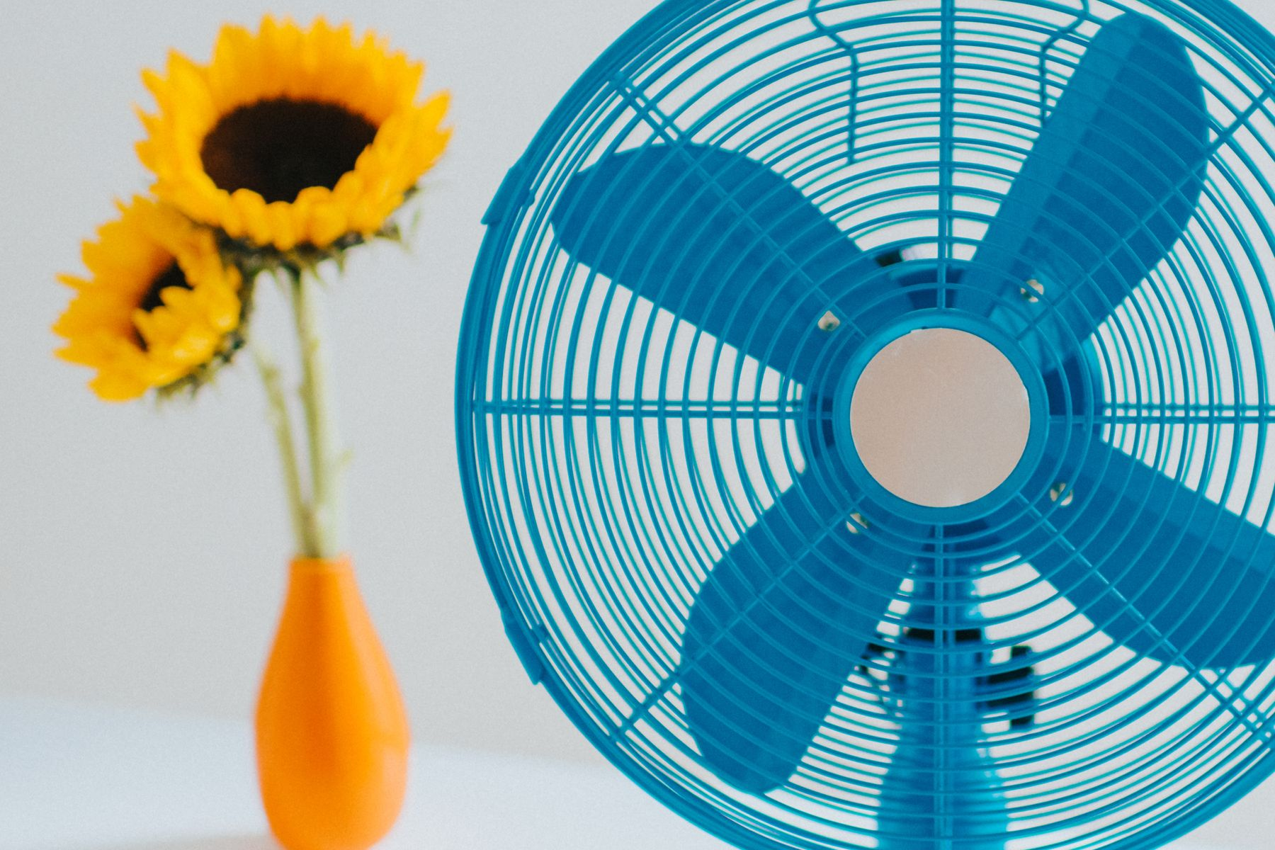 A blue fan to help get rid of musty smells in the home with sunflowers in the background