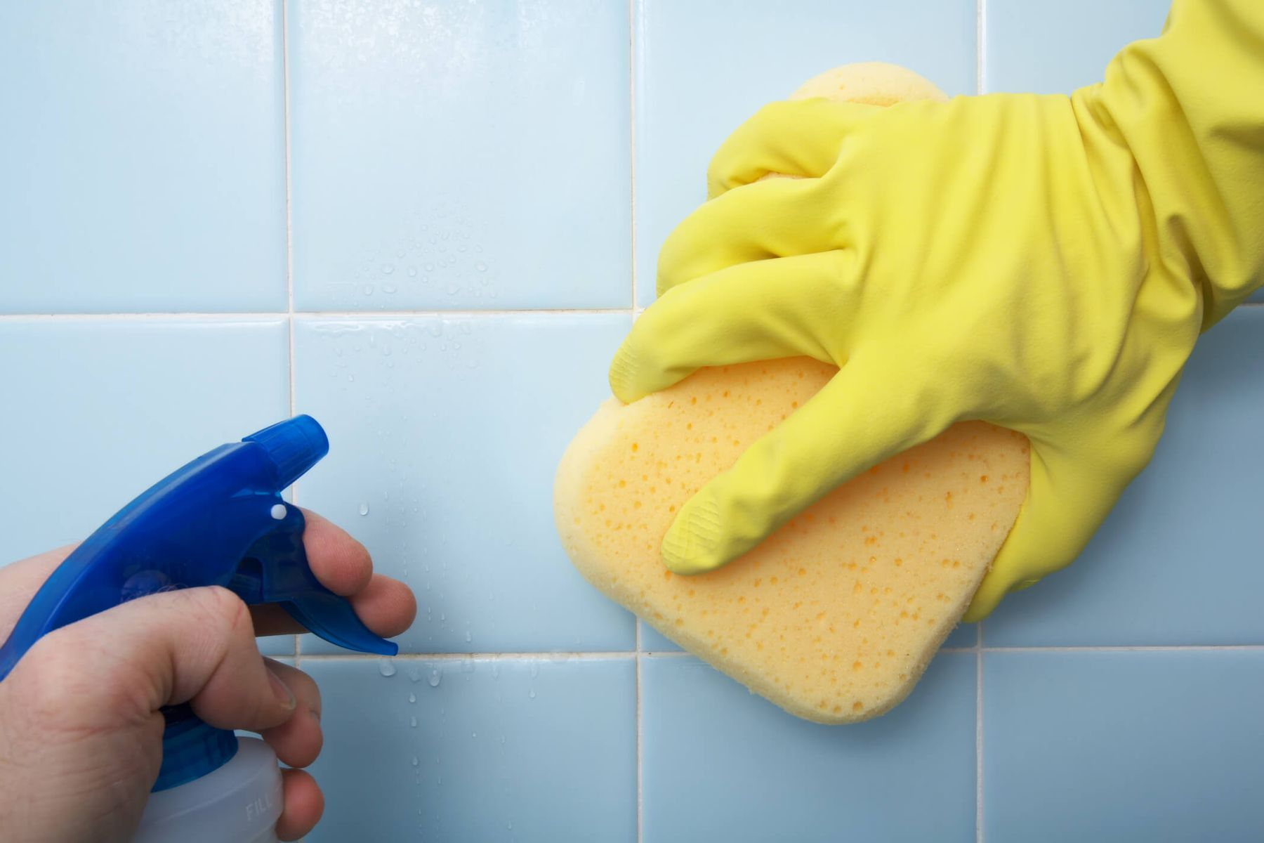 Does bleach kill bacteria, viruses, and mold