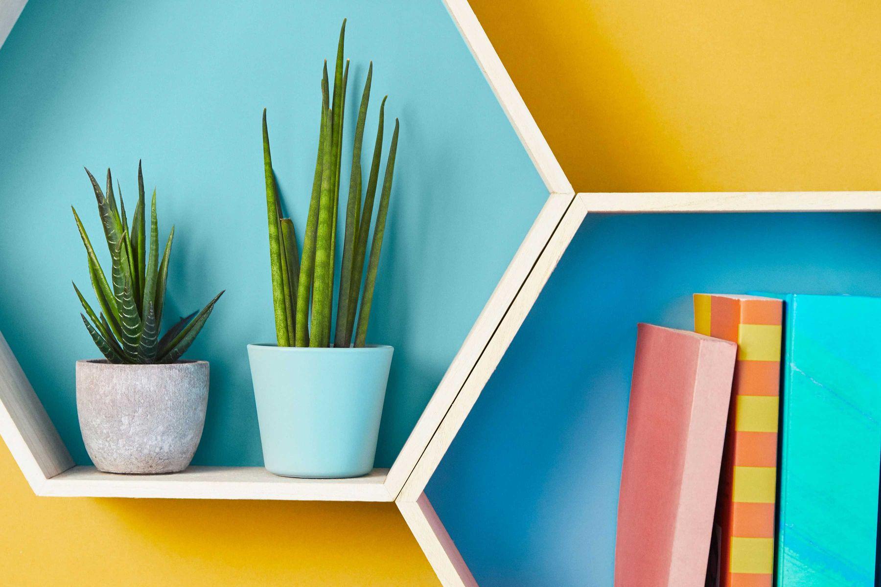 prateleiras-organizadas-com-plantas-livros