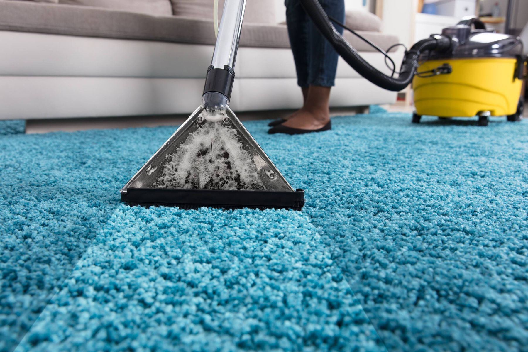 rug cleaning in home