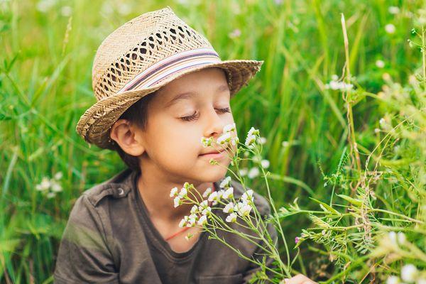 Những ảnh hưởng của mùi hương lên não bộ