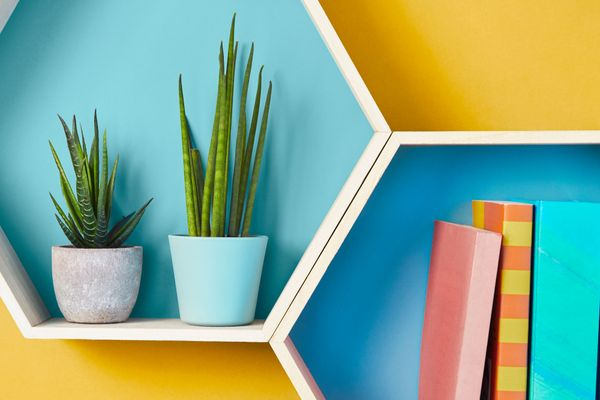 Octagonal shelving with books and flower pot in genius storage idea