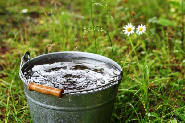 Hard water making your buckets look dirty? Here's how you can get rid of those tough borewell stains.