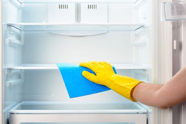 hand cleaning fridge
