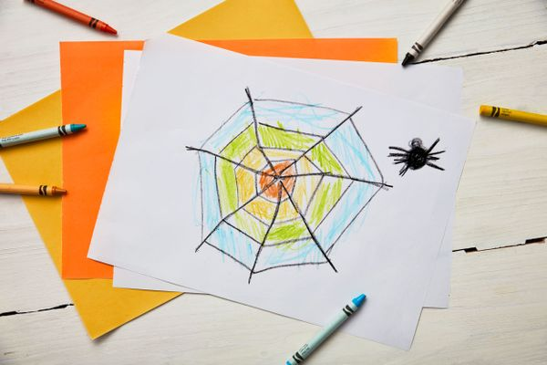 Kid's drawing of a spider web and a spider