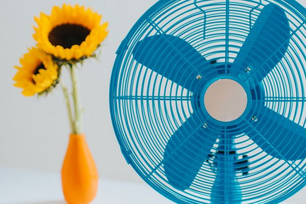 a blue room fan to blow away musty smells in the home with sunflowers in the background
