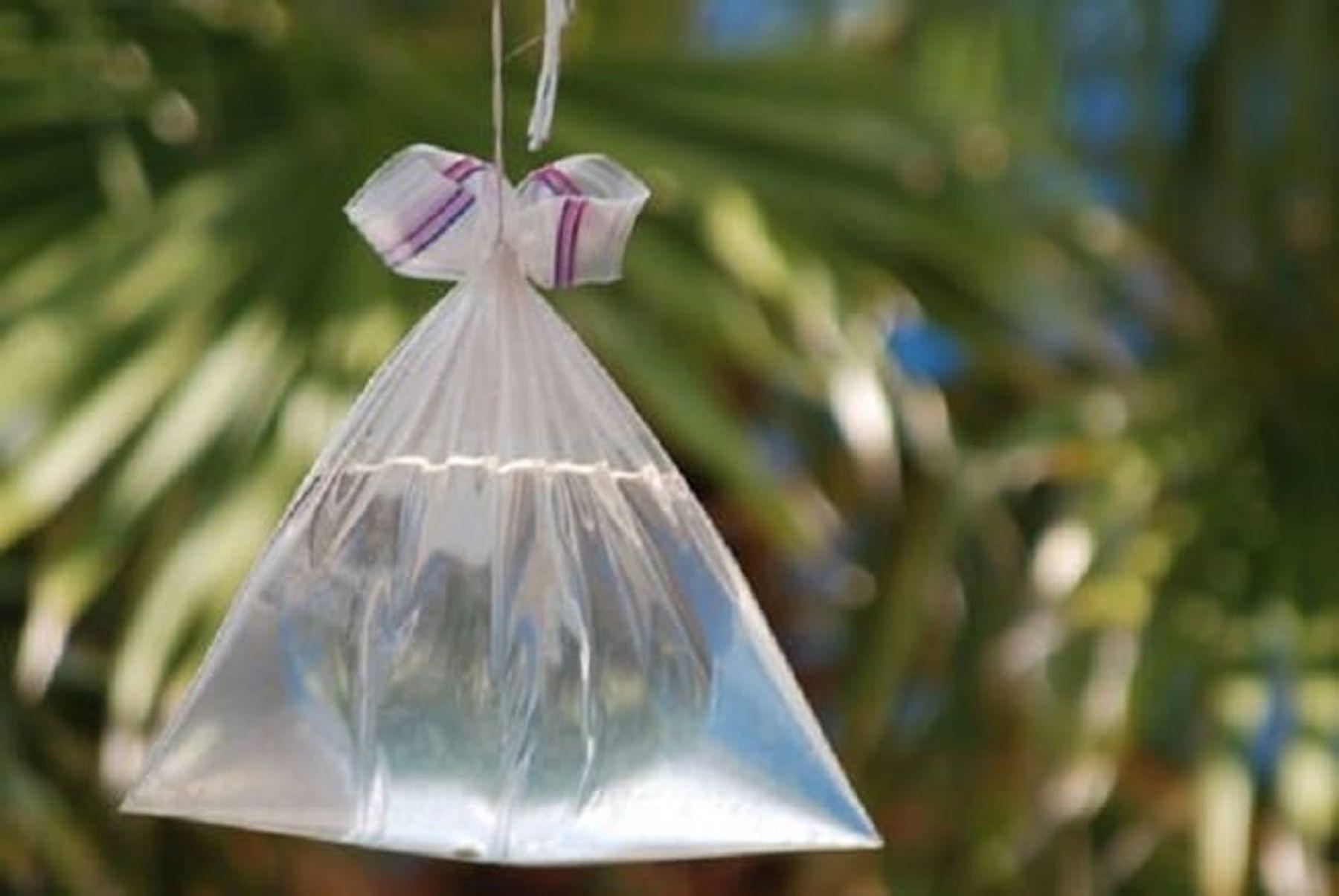 Step 5: Cách diệt ruồi bằng túi nước