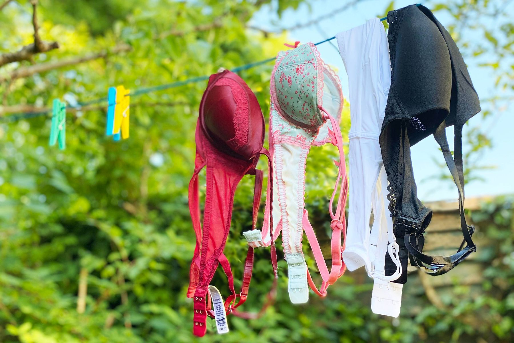 Freshly washed bras hanging to line dry outside.