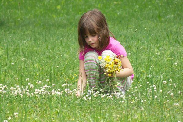 Muốn hoa tươi lâu, mẹ đừng quên 6