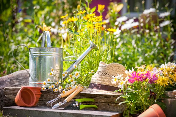 Sustainable Gardening Tips To Help You Save Water