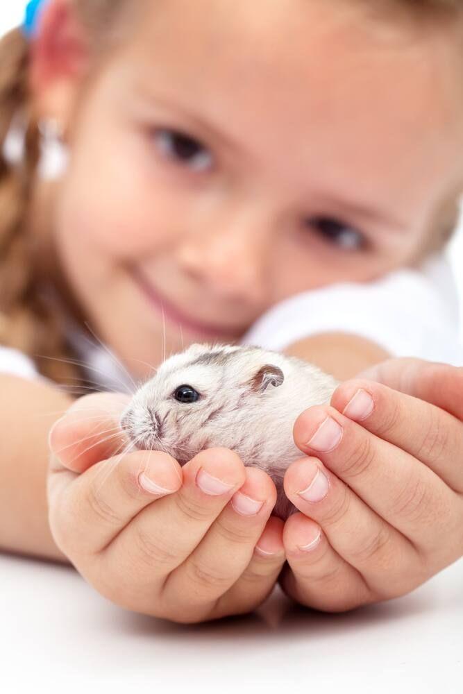 dạy bé bảo vệ môi trường