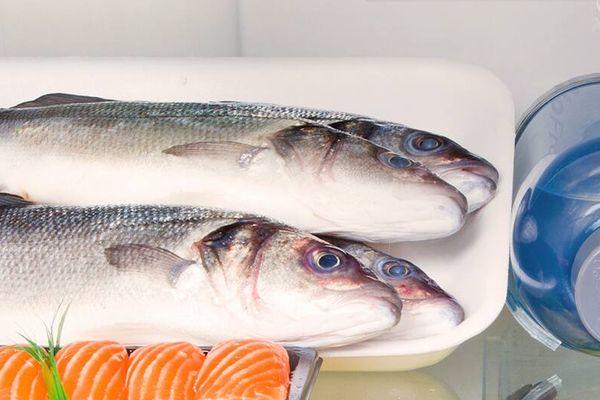 Hướng dẫn cách khử mùi tanh cá trong tủ lạnh
