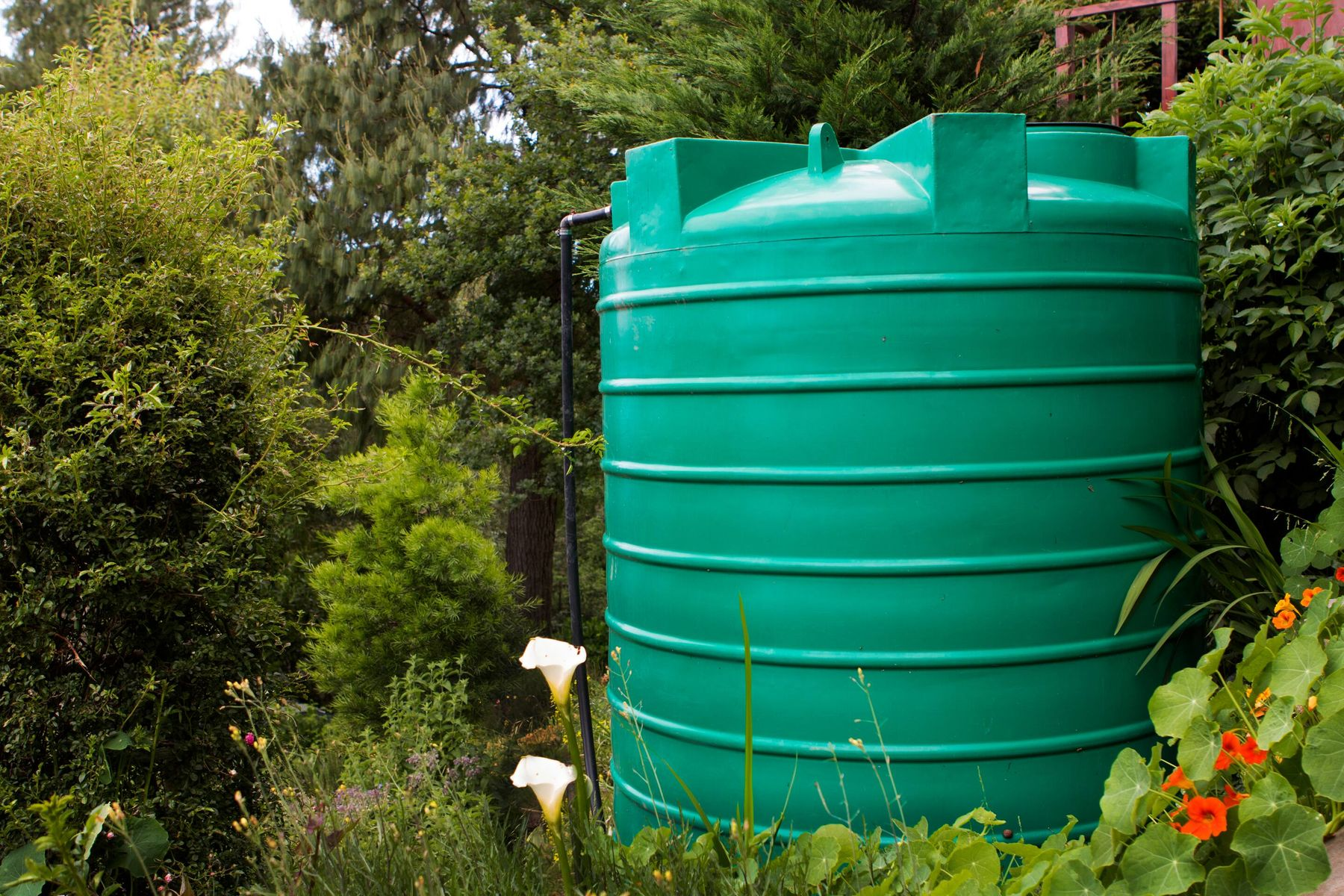 Easy Method to Clean your Outdoor Water Tank