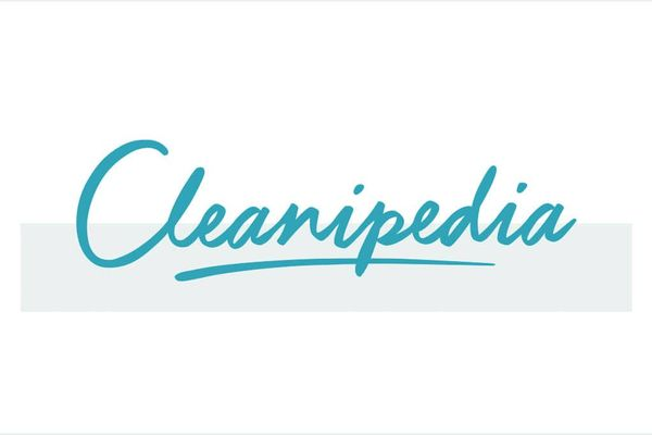 Cleanipedia logo