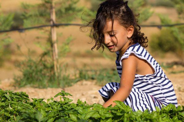 Mách mẹ 4 cách giúp trẻ nâng cao sức đề kháng, không ốm vặt khi giao mùa