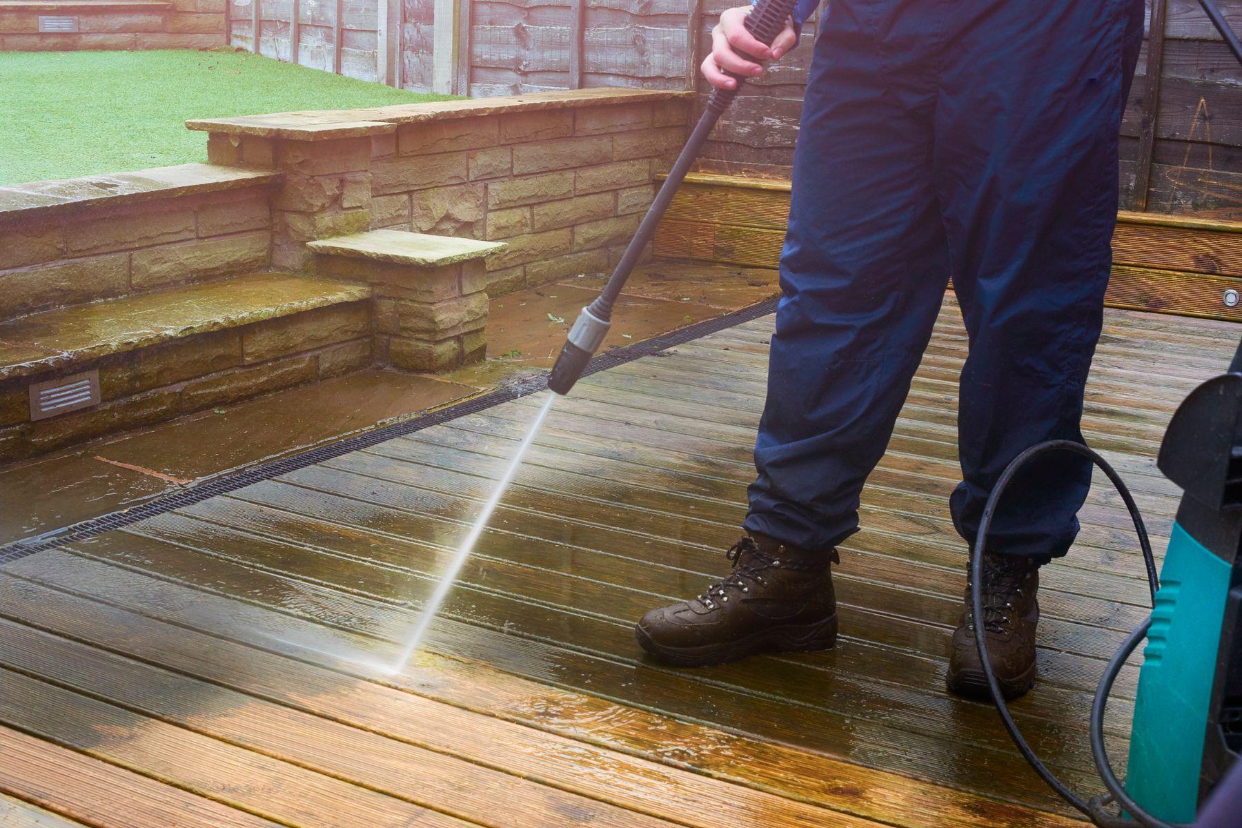 Como desinfetar quintal com cachorro: higienização completa