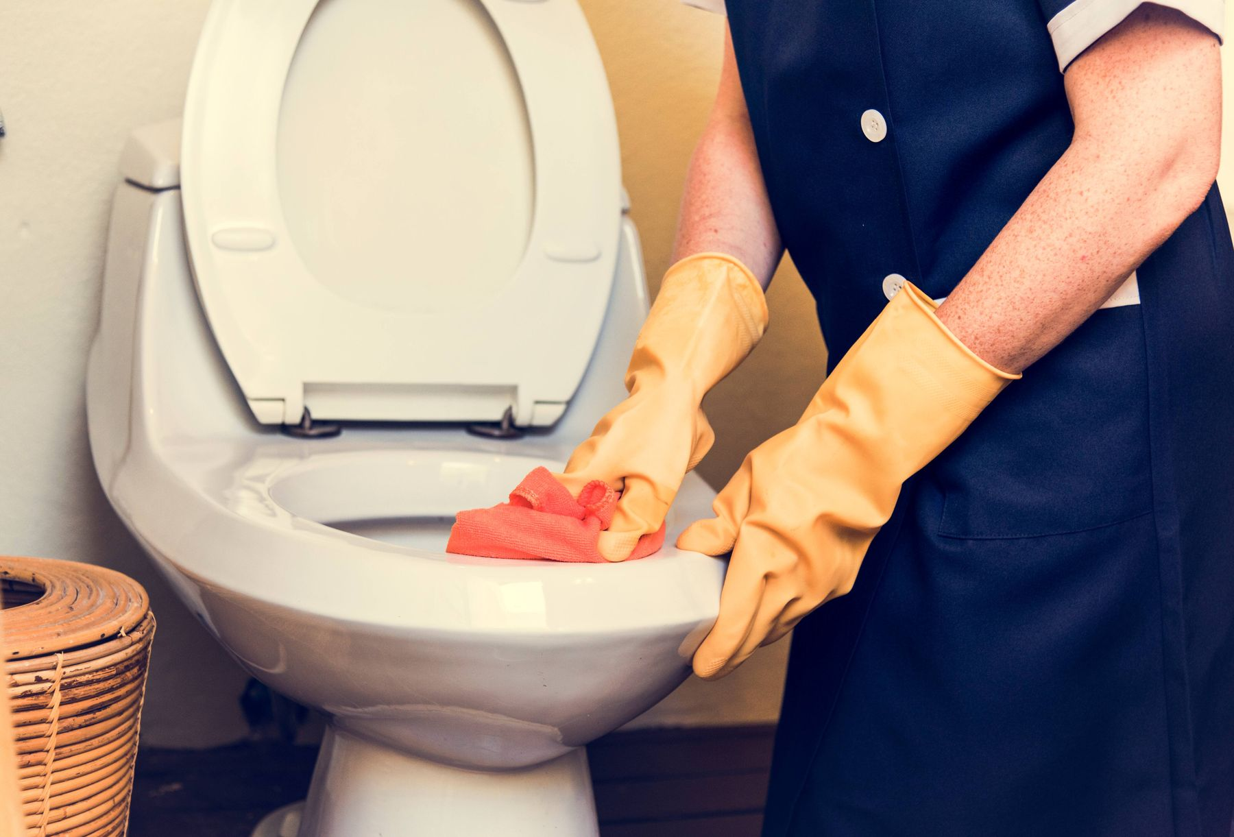 Toilet Cleaning Tips