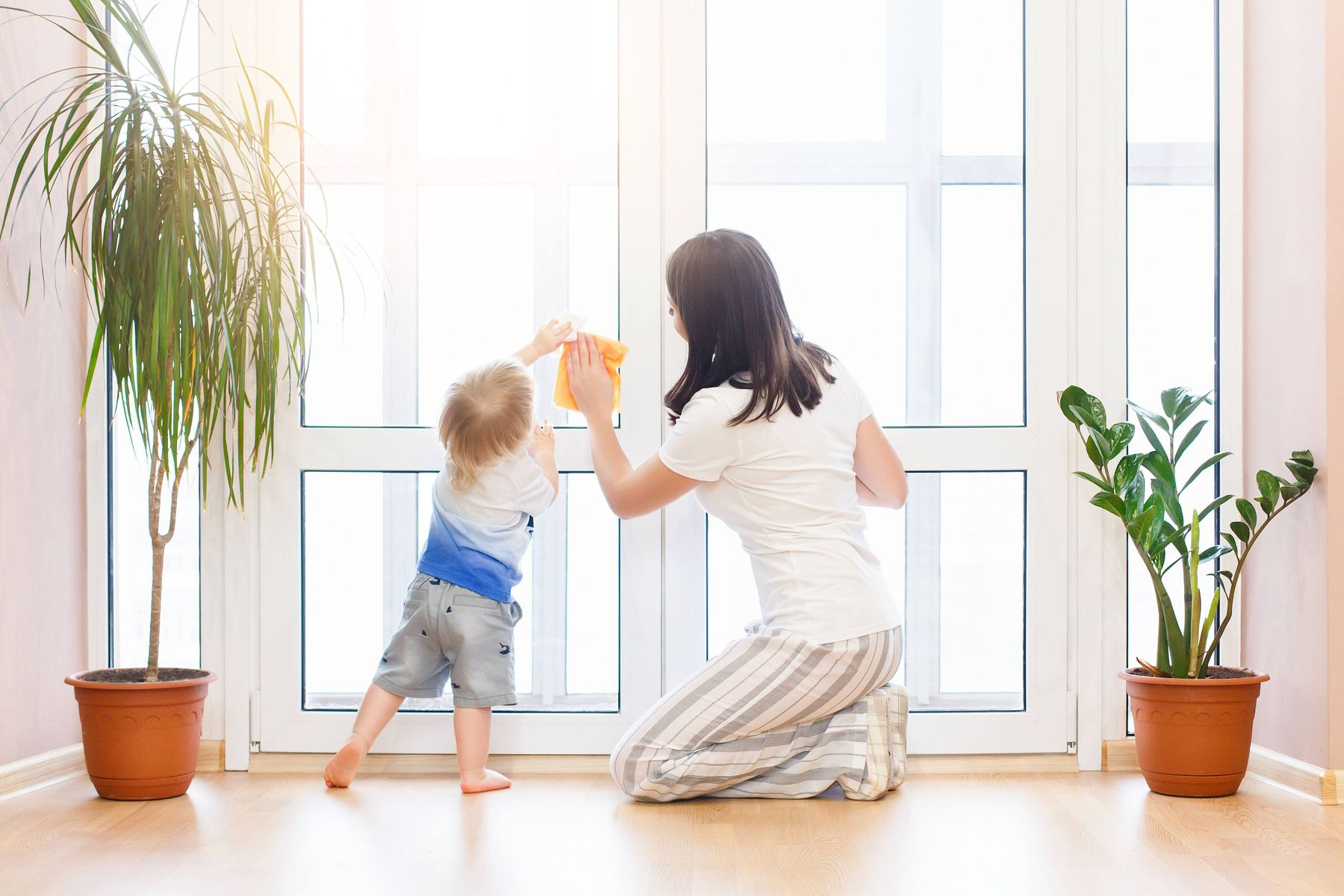 Step-By-Step Guide to Clean Your Windows | Cleanipedia