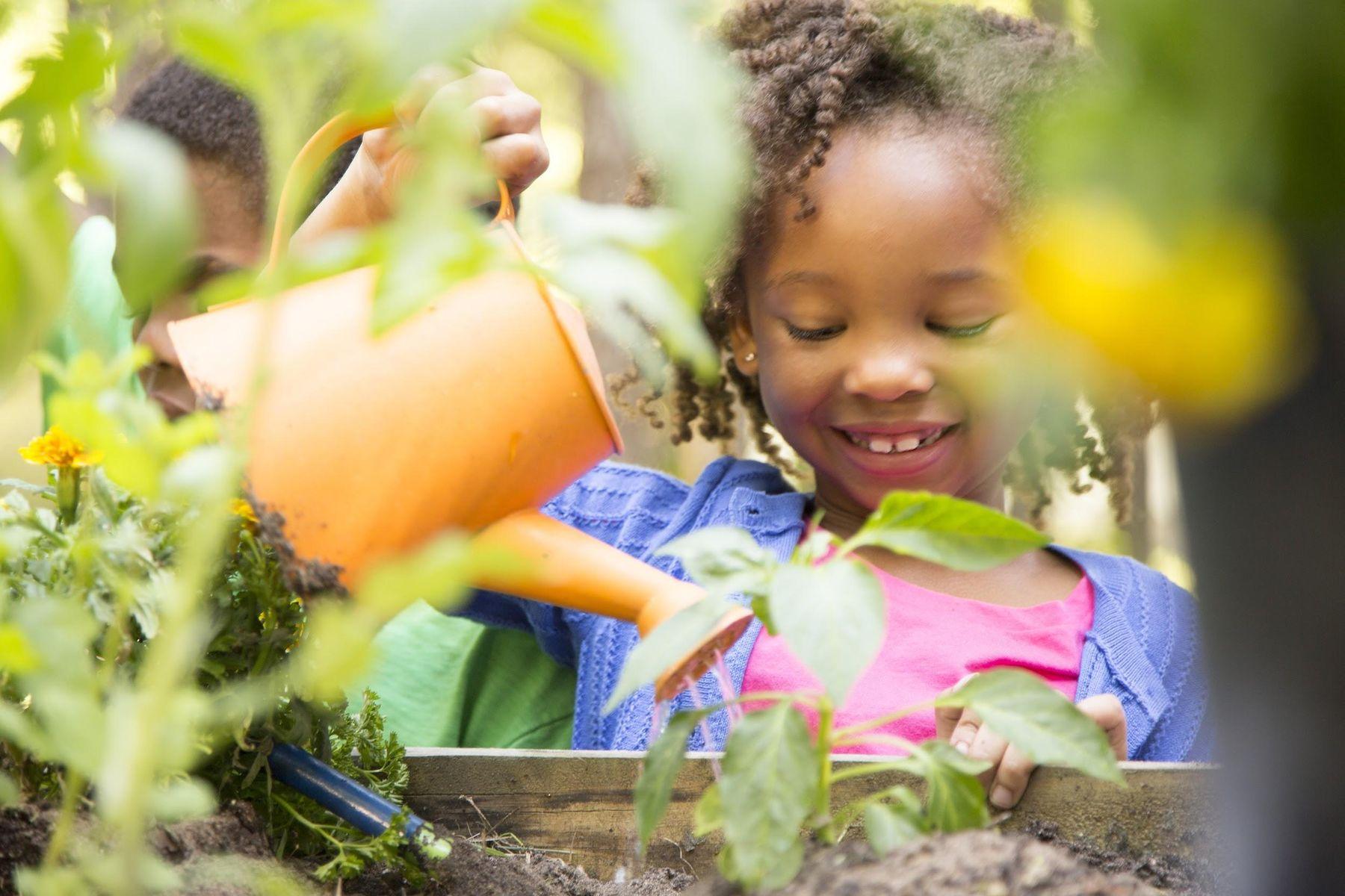 Step 6: Criança com regador aguando a horta