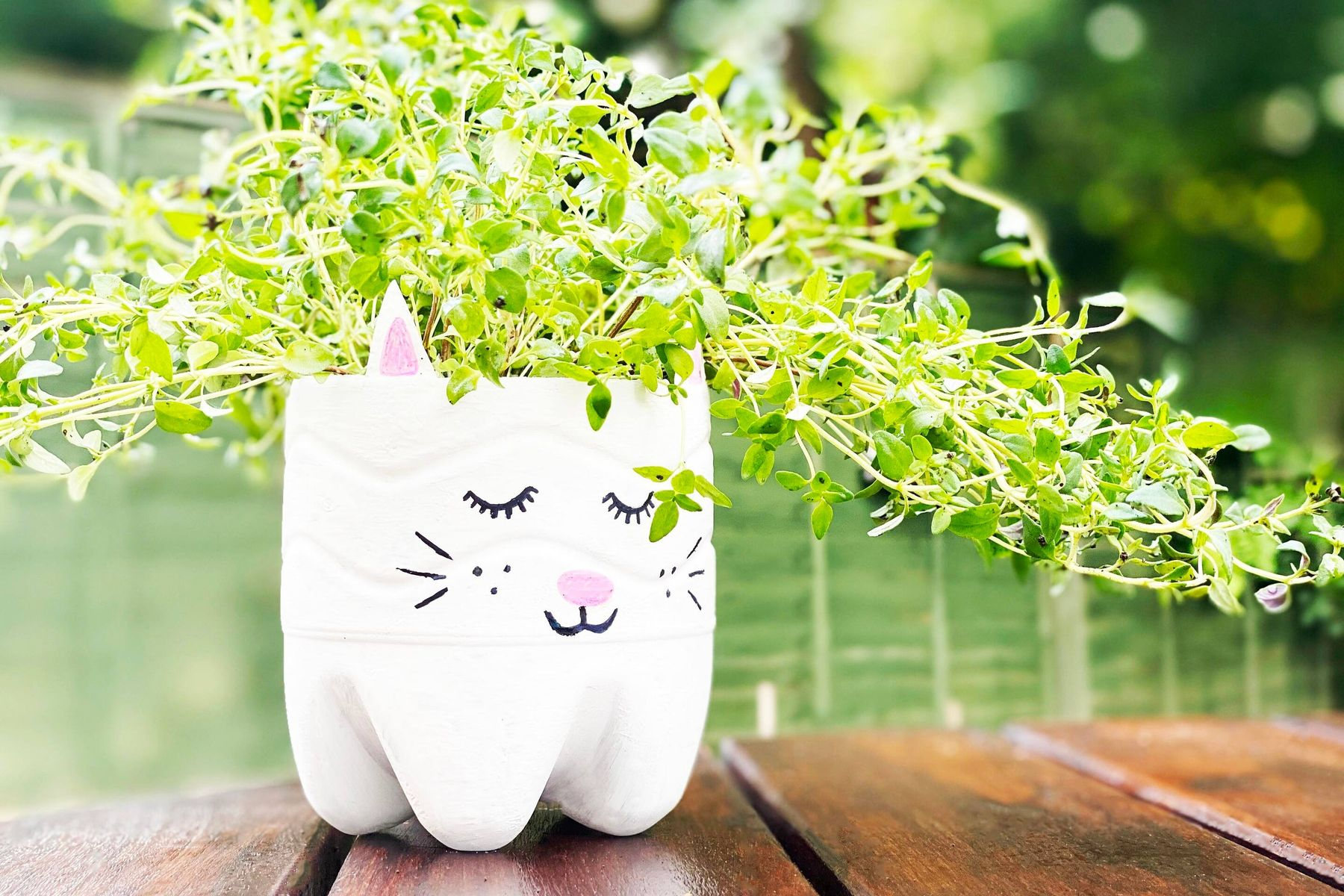 vase with green plant