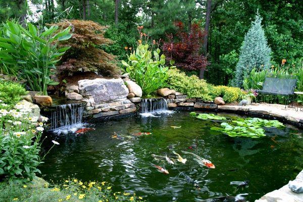 Cách diệt rêu hồ cá ngoài trời, lọc nước và xử lý nước hồ cá bị xanh