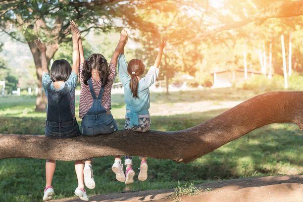 Mùa hè của trẻ sẽ thật vui với 4 trải nghiệm hấp dẫn này