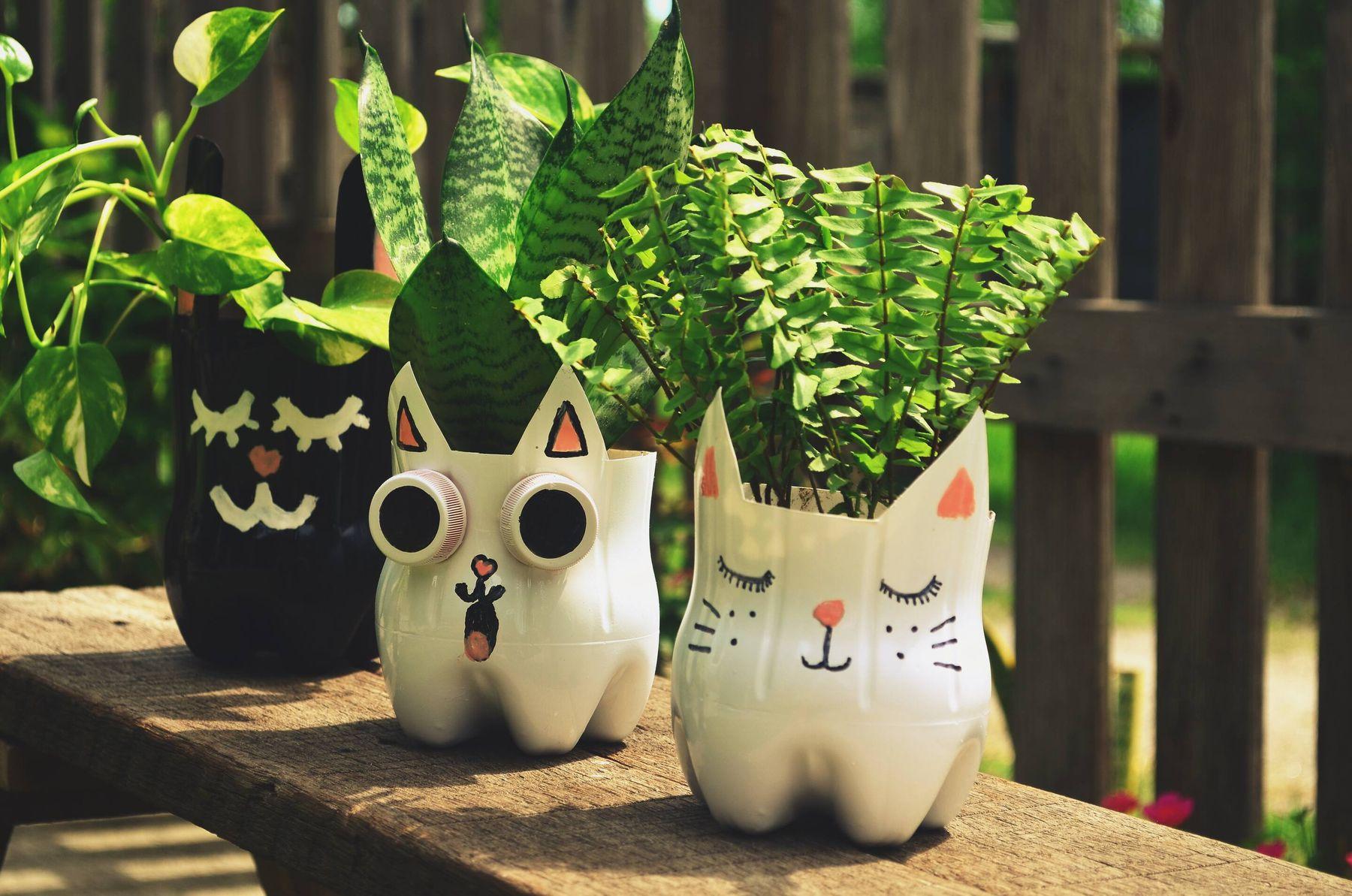 Cách tái chế chai nhựa thành chậu trồng hoa hình mèo dễ thương