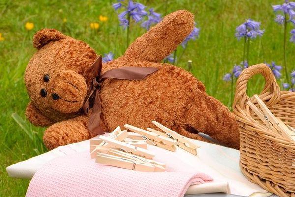 3 Hiểm họa từ gấu bông bẩn bạn cần phòng tránh