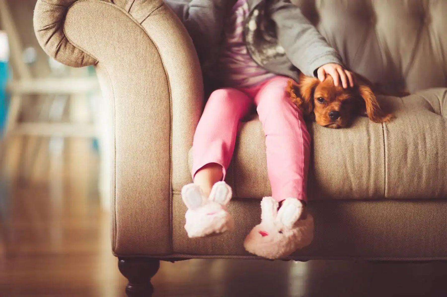 bảo quản ghế sofa