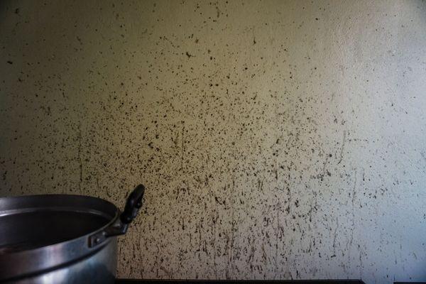 3 Cách tẩy dầu mỡ trên máy hút mùi đơn giản