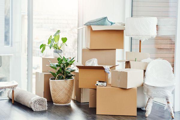 Dọn dẹp nhà cửa nhanh với việc vứt bỏ đồ đạc không cần thiết