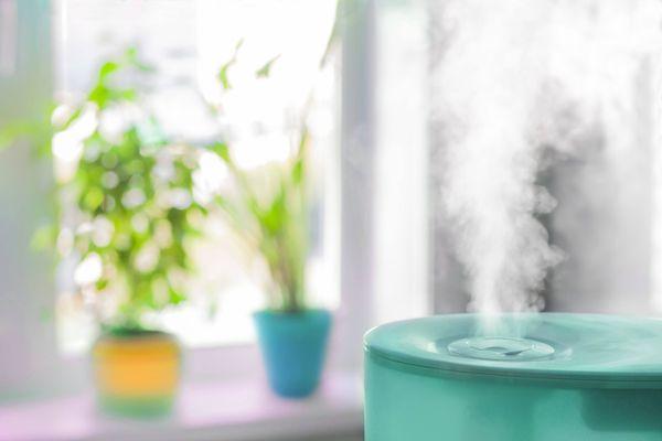 zielony osuszacz powietrza