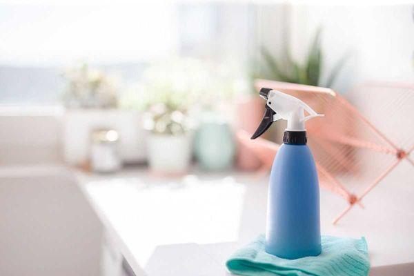 produto-de-limpeza-sobre-pia-da-cozinha